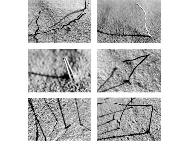 Series II N°1/2002-2003. Composition of six photographic prints, each print: 55 X 33 cm