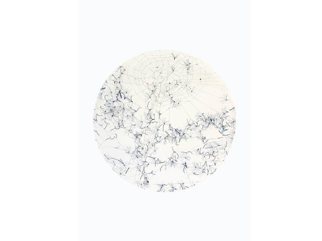 tissu-du-reel-3_01